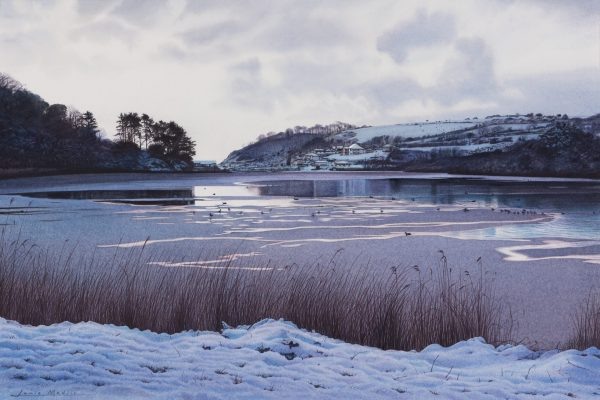 Swanpool in the Snow